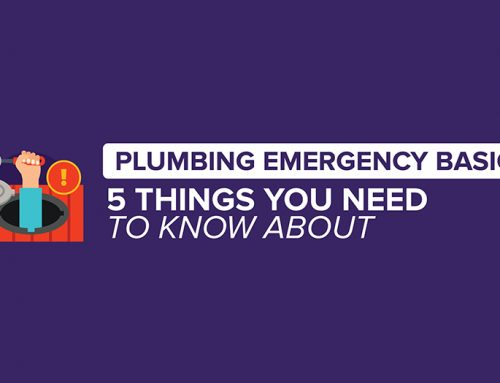 Plumbing Emergency Basics: 5 Things You Need to Know About